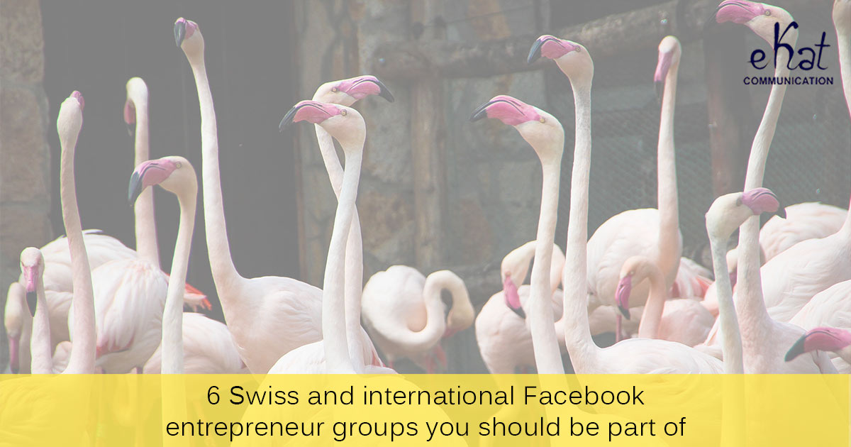 6 Swiss & international Facebook entrepreneur groups blog post image -eKat Communication
